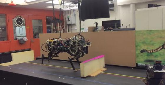 El Robot Guepardo del MIT capaz de localizar y saltar obst�culos