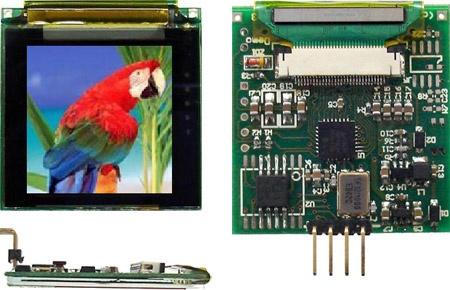 OLED LCD Grafico color 128x128 con memoria flash 8Mb