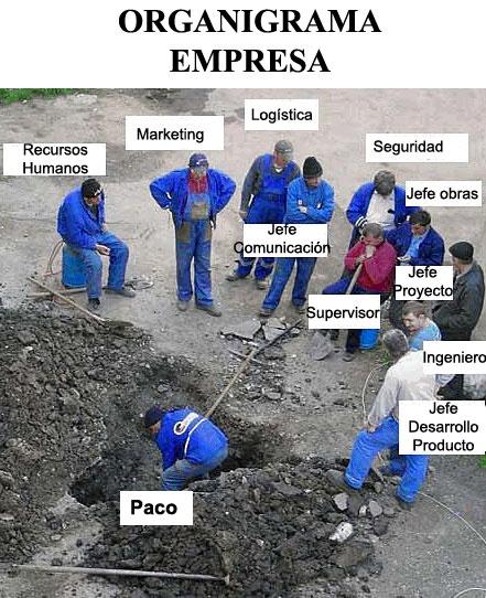 Organigrama de trabajo en España