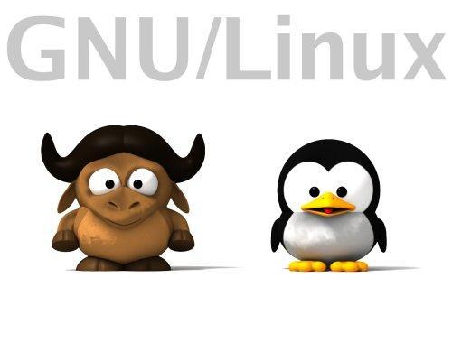 Dia oficial del software Libre!