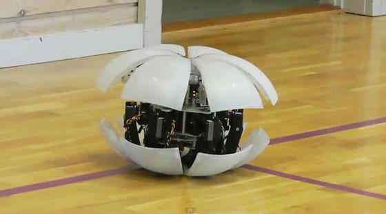 Robot MorpHex: El robot pelota hexápodo