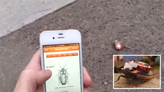 RoboRoach: Controlando una cucaracha por Bluetooth