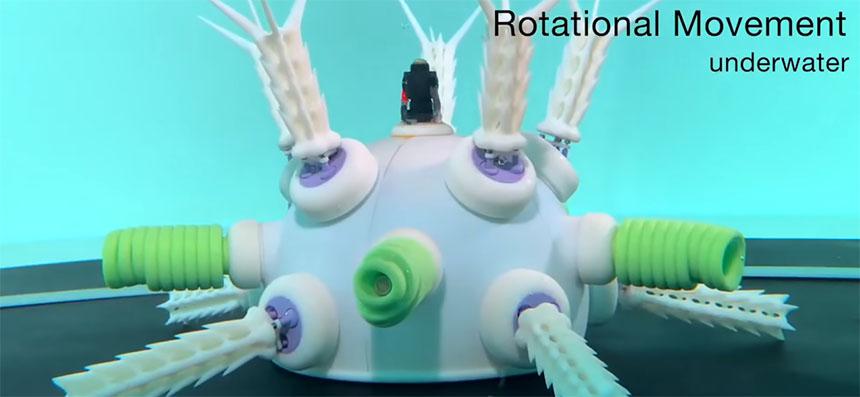 Los 7 robots más raros del mundo