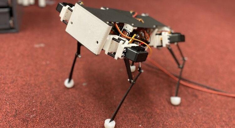 Pupper: El robot quadrúpedo imprimible de Stanford que puedes construir tu mismo