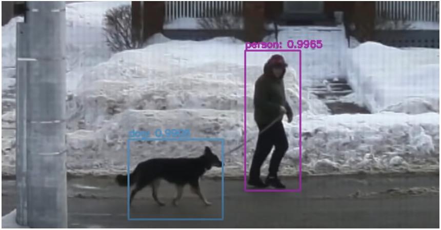 Detector de perros con YOLOv3 y Raspberry Pi