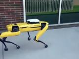 SpotMini de Boston Dynamics dando un paseo en piloto automático